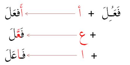 3+1 verbs